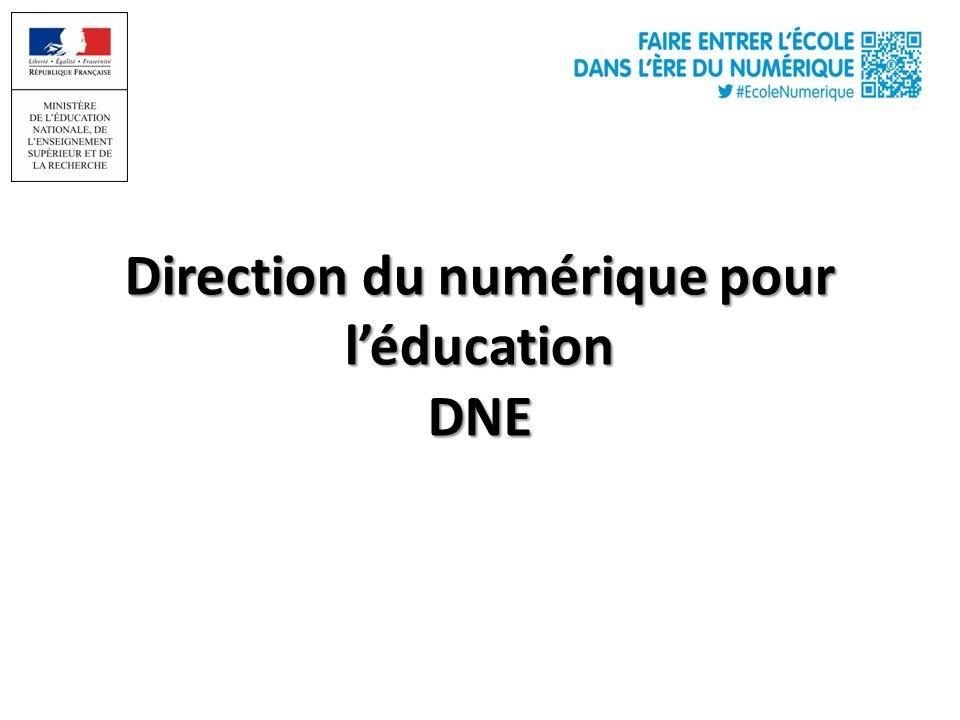 Séminaire des IATICE. DNE A2. Blandine Raoul-Réa. Chef du département du développement des usages et de la valorisation des pratiques.